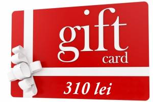 gift 310